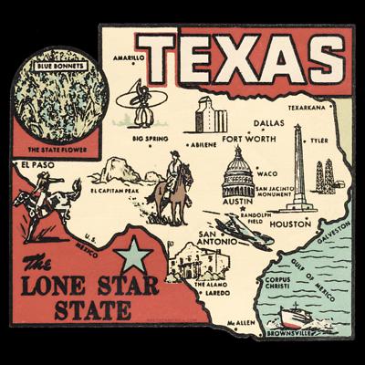 Texas-Gov-Race-2010